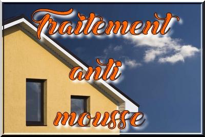 dufresne peinture demoussage toiture facade boulzicourt 08. Black Bedroom Furniture Sets. Home Design Ideas